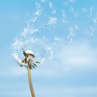 La vida no se mide por las veces que respiras #felicidad #motivacion #optimismo